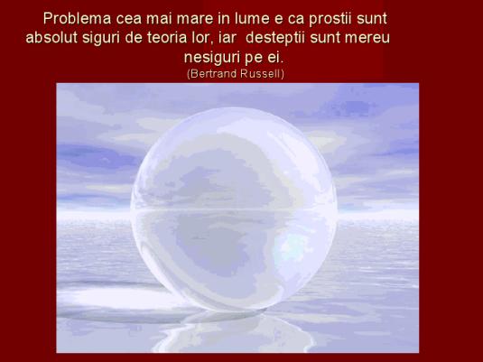 viewer (8)