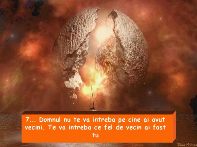 viewer (14)