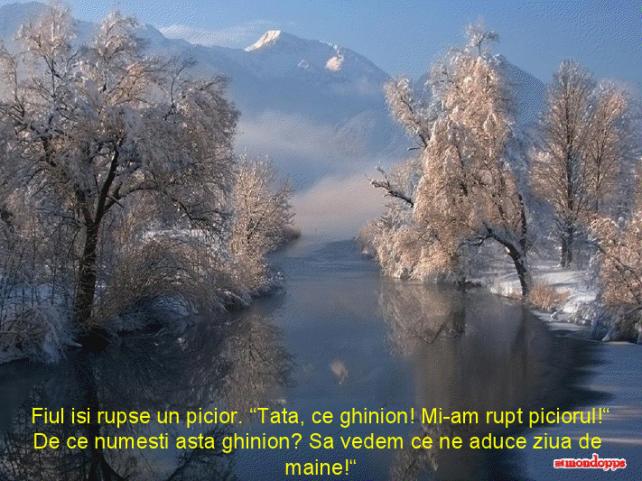 viewer (94)