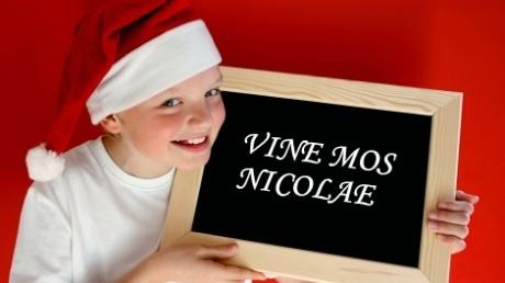 2_vine_mos_nicolae_05340300