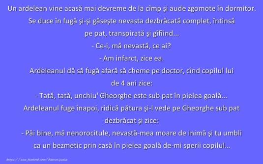 ardeleni_25
