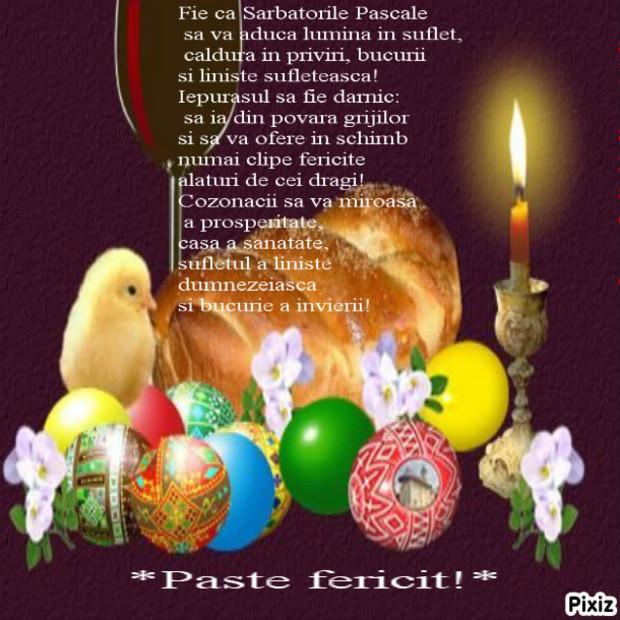 paste-fericit-377_65fb459a0b2942